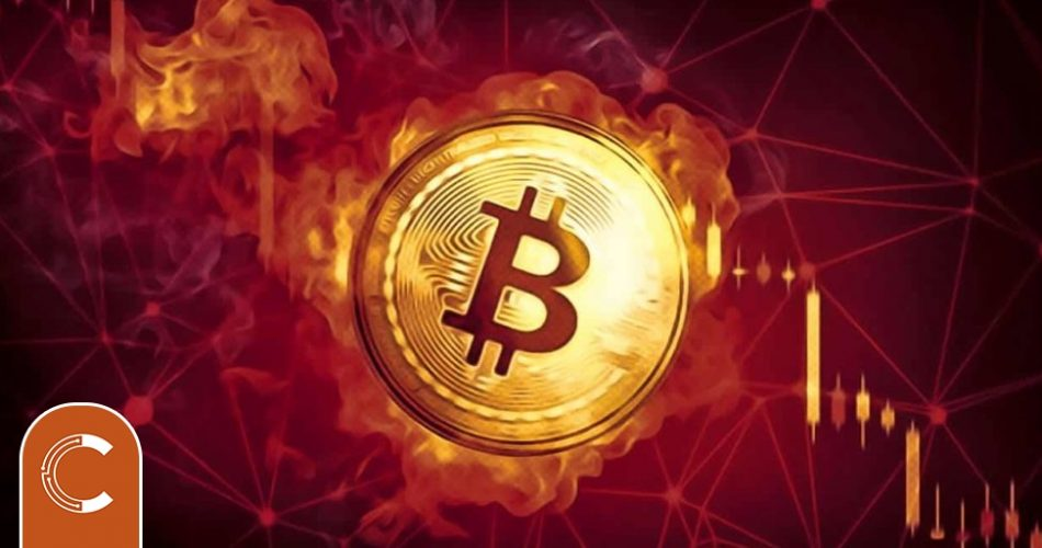 Frightening Prediction from Cryptocurrency Analyst Who Knows Bitcoin (BTC) 50% Drop